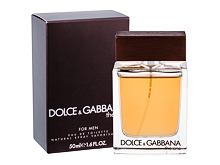 Toaletna voda Dolce&Gabbana The One For Men 50 ml